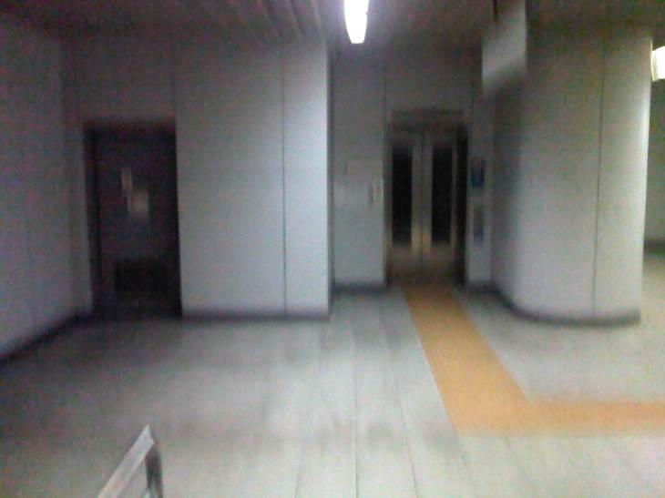 IMG04864-20121115-1007